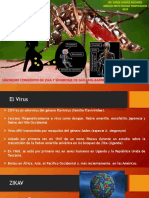 5. ZIKA 2019 GENERAL.pdf