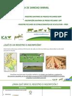ICA - PDET 2020 Registro Sanitario Predio Pecuario (RSPP) MAYO (1)