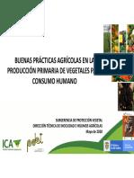 ICA - Presentación Vegetales PDET