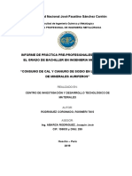 INFORME PPP