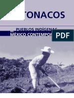 Totonacos