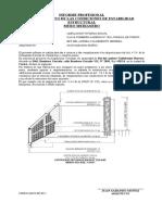 Informe  Estabilidad Muro Medianero