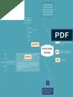 Tema central.pdf