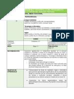 Guía 2 Castellano Ingles Informatica 11°.pdf