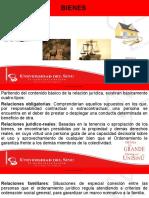 2. RELACION JURIDICA DE LOS BIENES.pptx 2020