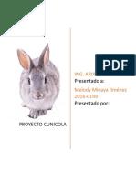 Proyecto cunicola de granja (conejos)