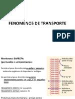 LAB 5. FENOMENOS DE TRANSPORTE
