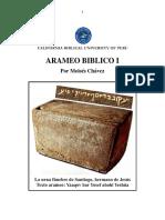 D-ARAMEO BIBLICO I