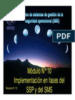 SMS M 10 Implementacion Por Fases