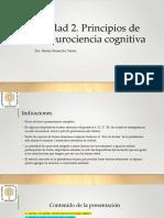 Principios de la neurociencia cognitiva