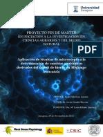 VillarroyaD_TM_2012.pdf