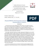 Obligaciones III - Responsabilidad por Hecho Propio
