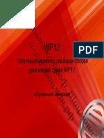 wp12dsas.pdf