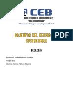 OBJETIVOS DEL DESARROLLO SUSTENTABLE_Hannia Romero_602