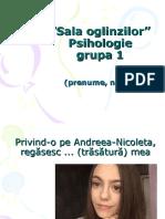 Sala oglinzilor_prezentari_Psihologie_1