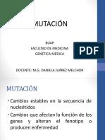 mutación .pdf