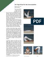Kriya für Immunsystem.pdf