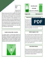 Boletin Informativo_4_Ayamonte