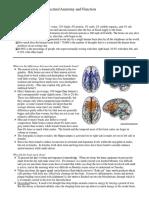 Brain Structure Psychology.pdf