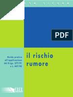 123_rischio rumore.pdf