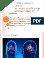 sistema-limbico-yunuen-guillen