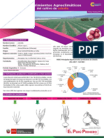 ficha técnica LYDS 05.pdf