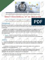 Droit Commercial et de Sociétés
