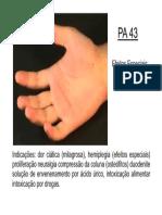 PA43.pdf