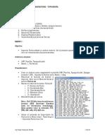 Guía de Practicas de Laboratorio 1 (2).pdf