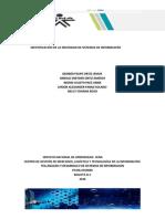 IDENTIFICACIÓN DE LA NECESIDAD DE SISTEMAS DE INFORMACIÓN (2).docx