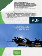 5. FLEXIBILIZACIÓN CURRICULAR