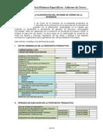 Pautas para elaborar Informe de Cierre Procompite (24-02-2014)_4