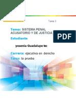 TIPOS DE PRUEBA EN DERECHO PROCESAL.docx