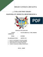 ESTRES - SALUD MENTAL.docx