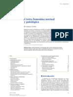 anatomia normal y patologica uretra femenina