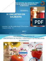 SEMANA 4  ENCURTUDO EN SALMUERA.pdf