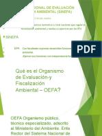 EL-SISTEMA-NACIONAL-DE-EVALUACIÓN-Y-FISCALIZACIÓN-AMBIENTAL
