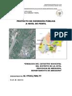 113103130-PIP-Catastro.pdf