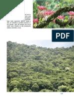 Anexo_8_Guias_Tecnicas_Restauracion_Ecologica_2