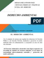 Copia de Presentación Derecho Ambiental.pptx