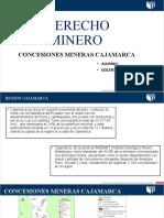 DERECHO MINERO- COLUNCHE1