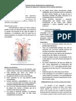 Problemática Ambiental en Arrecifes de Coral..pdf