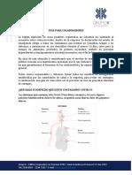GUIA PARA COLABORADORES - COVID