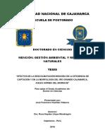 """""""EFECTOS DE LA DESCOLMATACIÓN INDUCIDA EN LA EFICIENCIA  DE CAPTACIÓN Y EN LA MORFOLOGÍA DEL RÍO .pdf"""