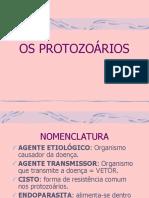 PROTOZOÁRIOS E PROTOZOONOSES pdf