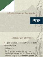 Metabolismo de los lipidos