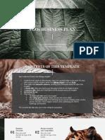 NGOs Business Plan by Slidesgo