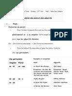 Le Pluriel Des Noms Et Des Adjectifs2