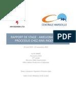 DARDE_Cécile_Rapport