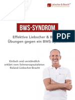 liebscher-bracht-ratgeber-bws